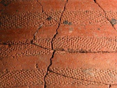 CAFM01: Bronce Inicial. Vaso campaniforme cordado (C/ZM). Dolmen de Forno dos Mouros  (Toques, A Coruña)