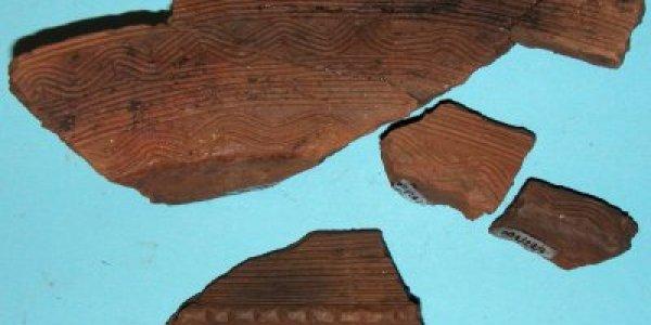 CAREQ/13: Neolítico Final. Cuenco liso. Poblado de Requeán (Toques, A Coruña)